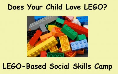 LEGO – Based Social Skills Camp